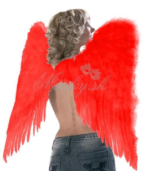 Krídla anjelské 0100252