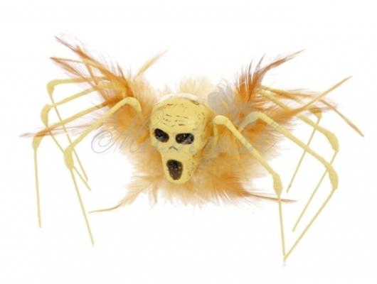 Pavúk kostra 61006