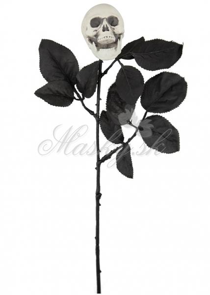 Ruža s lebkou 60512